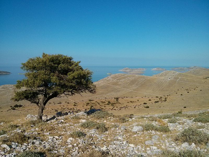 Kornat_island_near_Vrulje